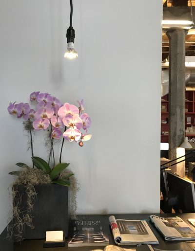 july-floral-orchid-planter-Olson-Kundig-seattle