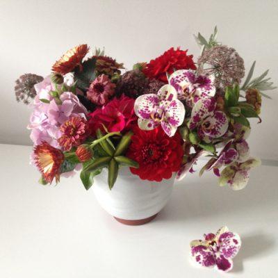 july-floral-peony-campanula-iris-smokebush-lupine